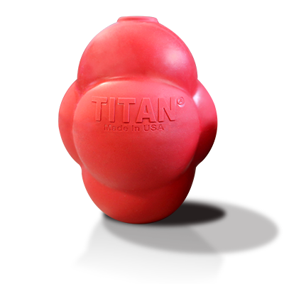 Titan Busy Bounce Dog Toy